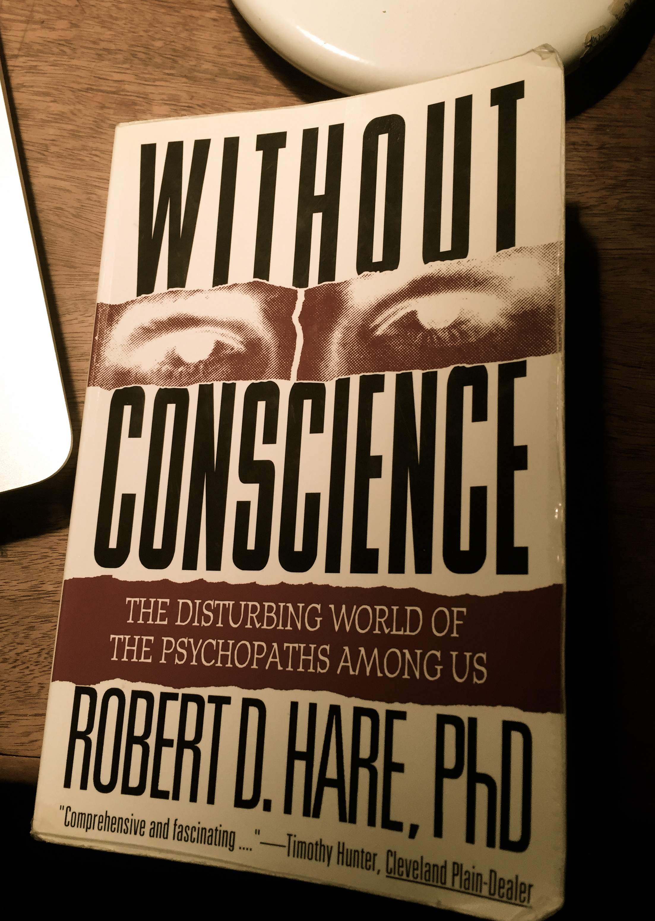 the disturbing world of the psychopaths essay Therefore, the book without conscience: the disturbing world of the psychopaths among us by robert hare is a well-developed work on psychopathic personality the author analyzes the reasons and consequences of psychopathic behavior stressing that it is the most dangerous personality disorder as such people when affected don't.